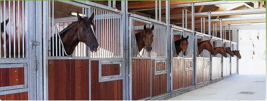 Championnat, Concours équitation – Carrière chevaux - Histoire du Club – Moulière