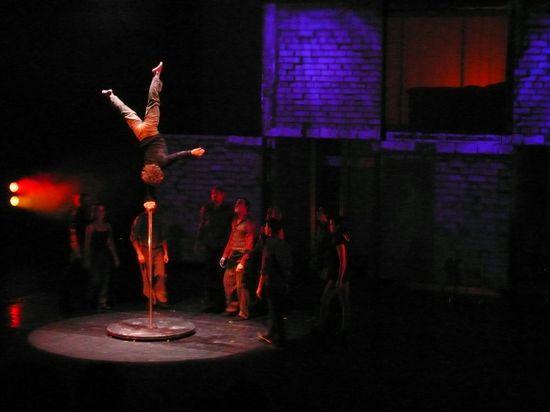 Cirque spy 1