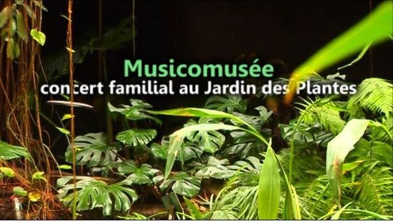 Musicomusée Visuel
